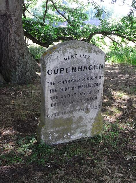 Duke Wellington Horse Copenhagen